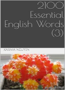 2100Essential English Words Book 3