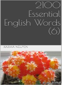 2100Essential English Words Book 6